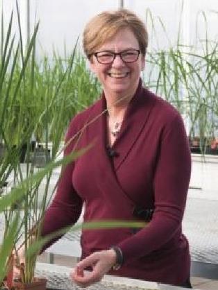 Dr. Jan Leach
