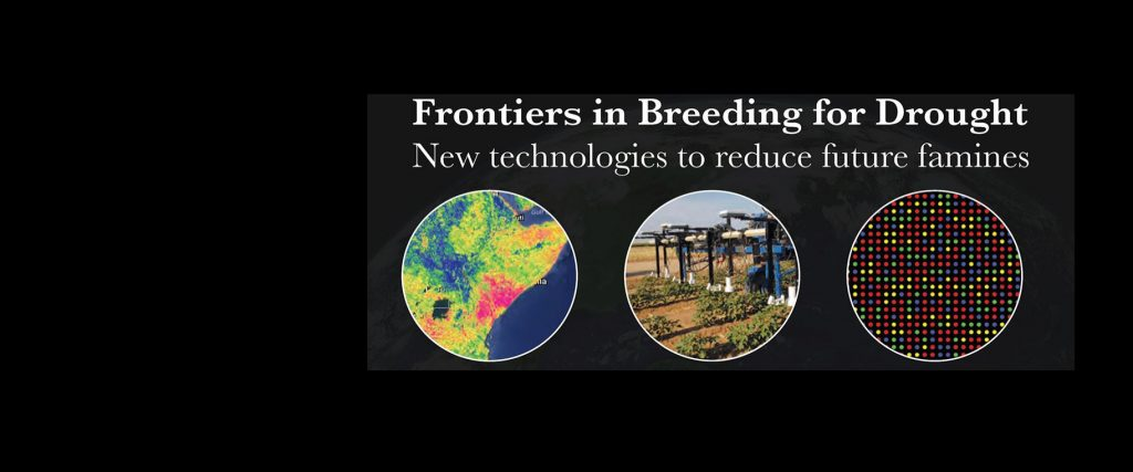 Frontiers in Breeding for Drought